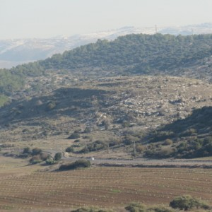 Tel Sochoh