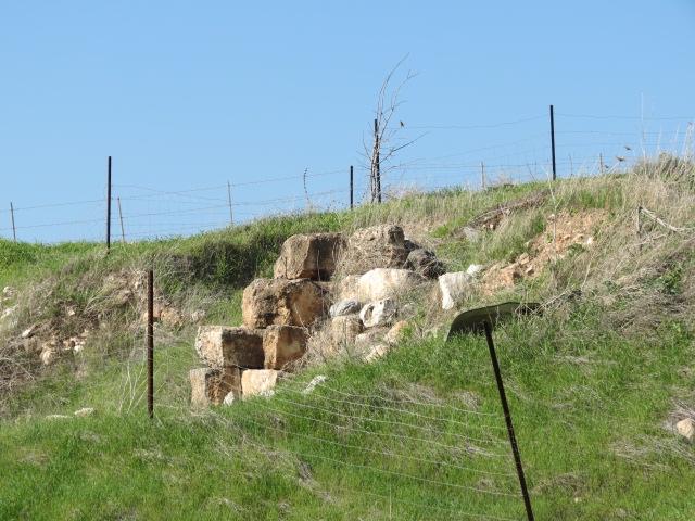 Tel Yizrael