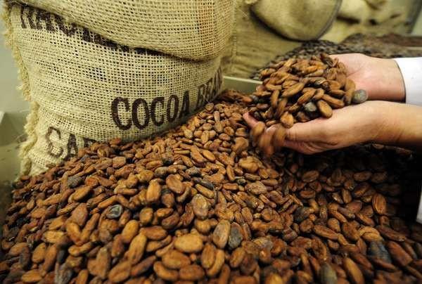 Kakao Rothschild Blvd Tel Aviv