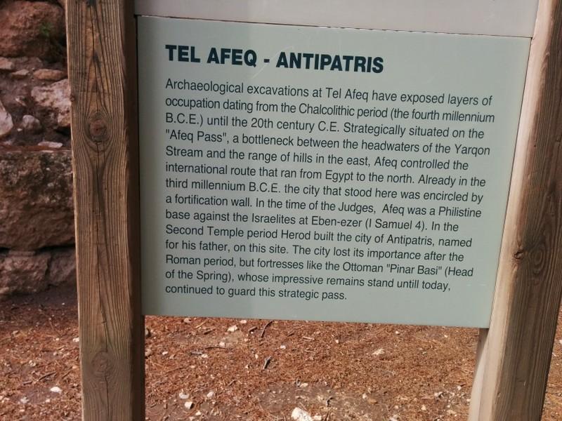 Tel Afek