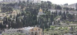 Visite des églises du Mont des Oliviers
