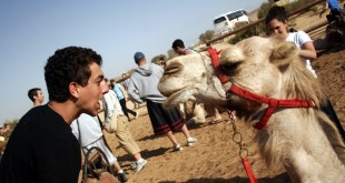 http://www.quantumbooks.com/other/travel-and-living/kinds-of-activities-for-teens-traveling-to-israel/